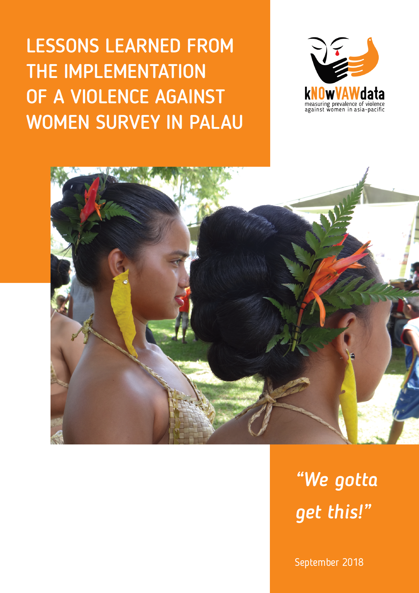 "Cover of ""Lessons learned from the implementation of a violence against women survey in Palau"""