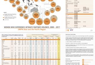Violence Against Women - Regional Snapshot (2017)